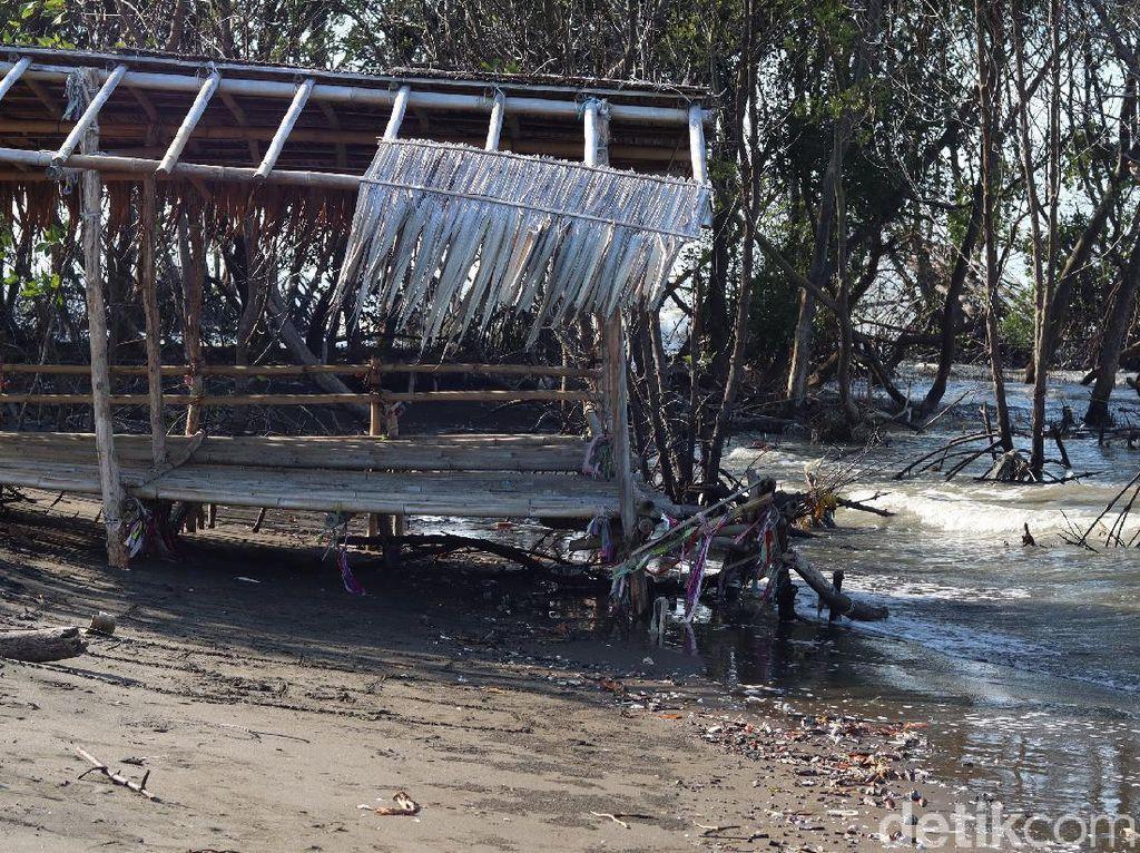 Potret Pantai Muara Beting Bekasi yang Terancam Abrasi