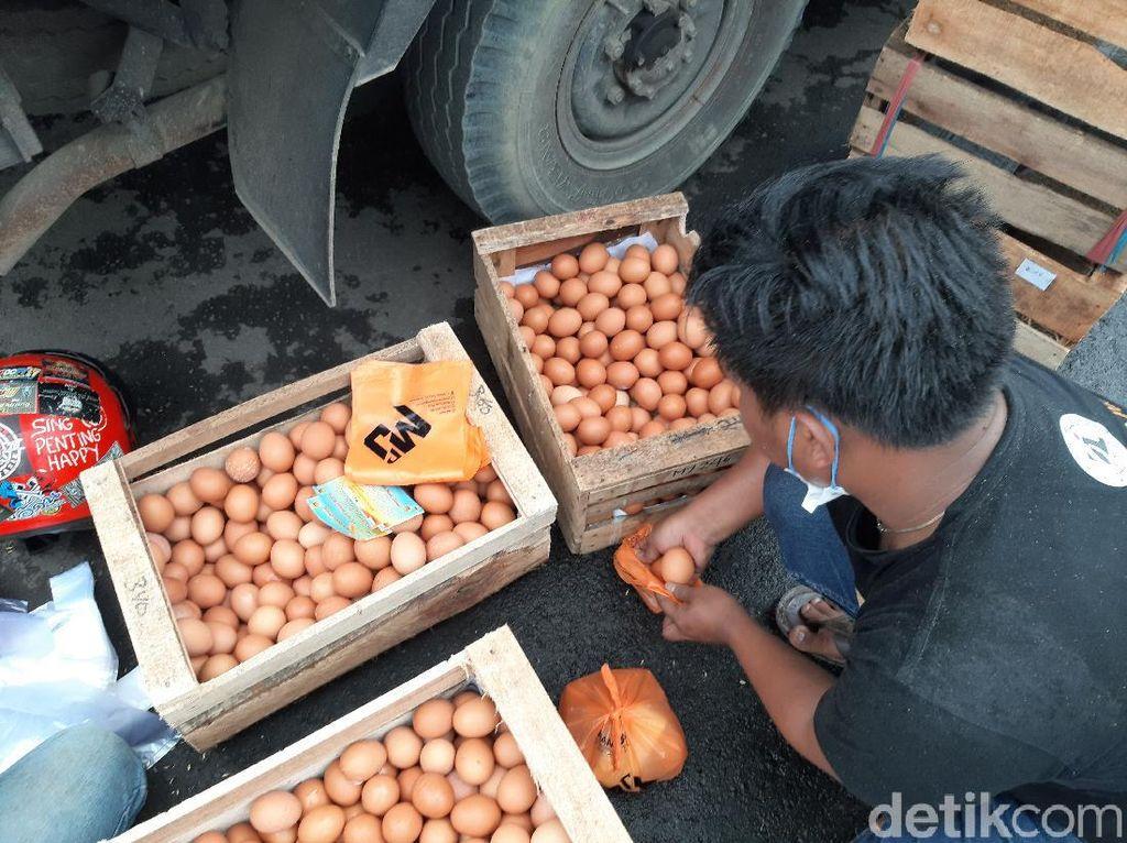 Bagikan Telur Gratis untuk Warga, Peternak Tasik: Harga Hancur