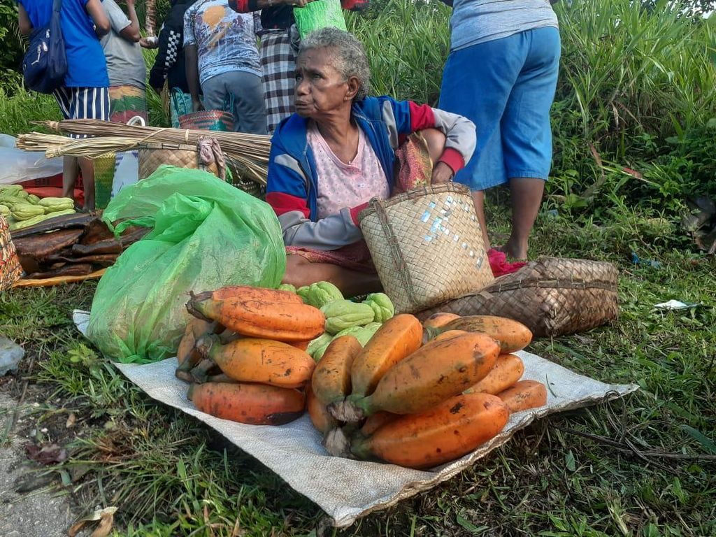 Buah Pisang Raksasa dari Papua Nih, Panjang 30 cm, Diameter 10 cm!