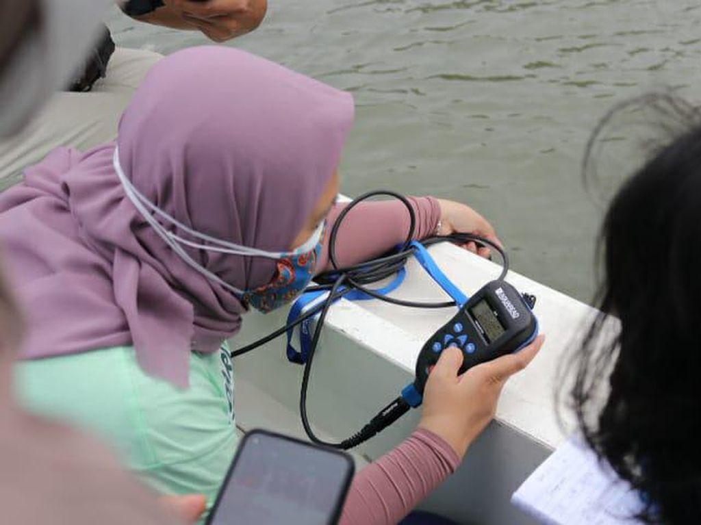 Usut Paracetamol Cemari Teluk Jakarta, DKI Akan Uji Sampel Ikan Lagi