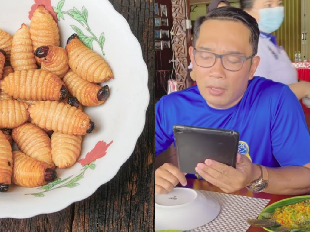 Ridwan Kamil Tantang Bima Arya dan Hengky Kurniawan Cicip Ulat Sagu, Ini Reaksinya