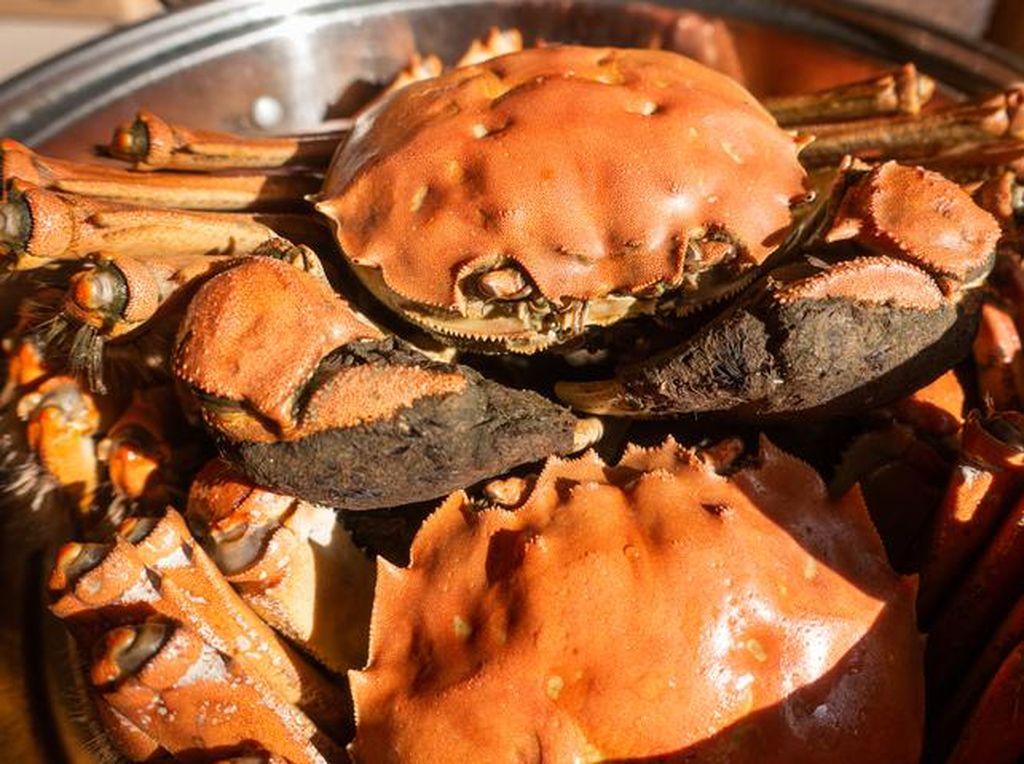 Doyan Kepiting? Ini Hukum Makan Kepiting Menurut Mazhab Ulama