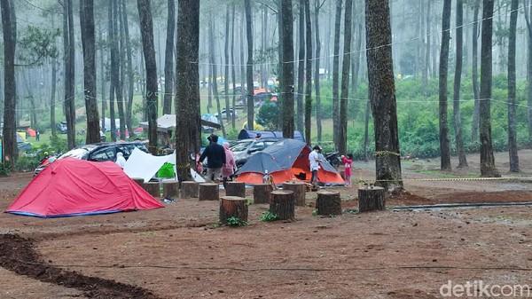 Kendati baru beroperasi selama 2 bulan, namun camping ground seluas 5 hektar itu mencuri perhatian wisatawan dan selalu ramai di akhir pekan. Ada berbagai fasilitas yang disediakan mulai dari kamar mandi, api unggun, hingga penyewaan tenda. Untuk bisa berkemah di Cozy Land, pengunjung cukup merogoh kocek Rp 25 ribu rupiah per orang. (Whisnu Pradana/detikTravel)
