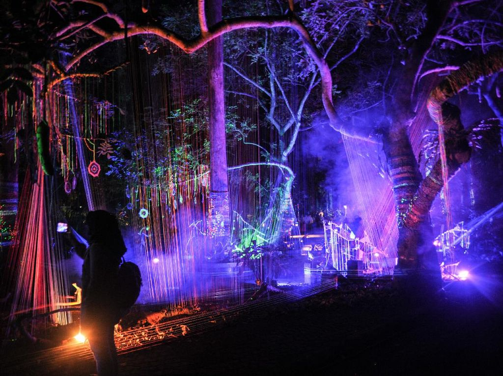 Baru Nih! Ada Wisata Malam Hutan Menyala di Bandung