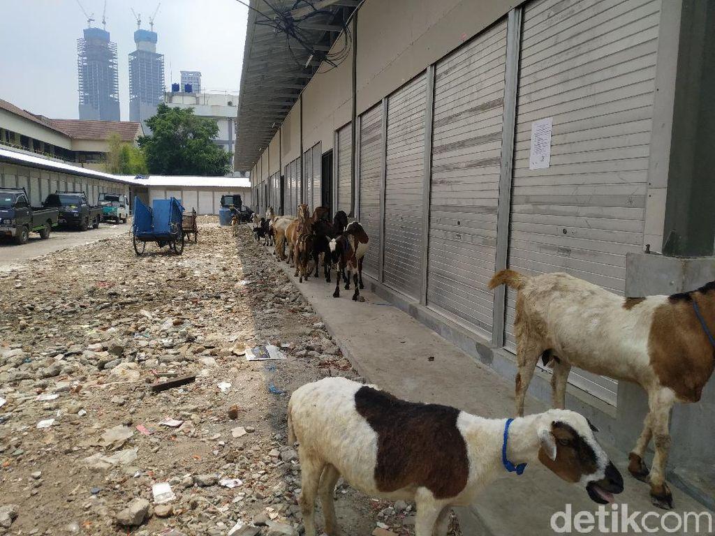 Sudah Oktober, Bangunan Baru Pasar Kambing Belum Juga Ditempati Pedagang