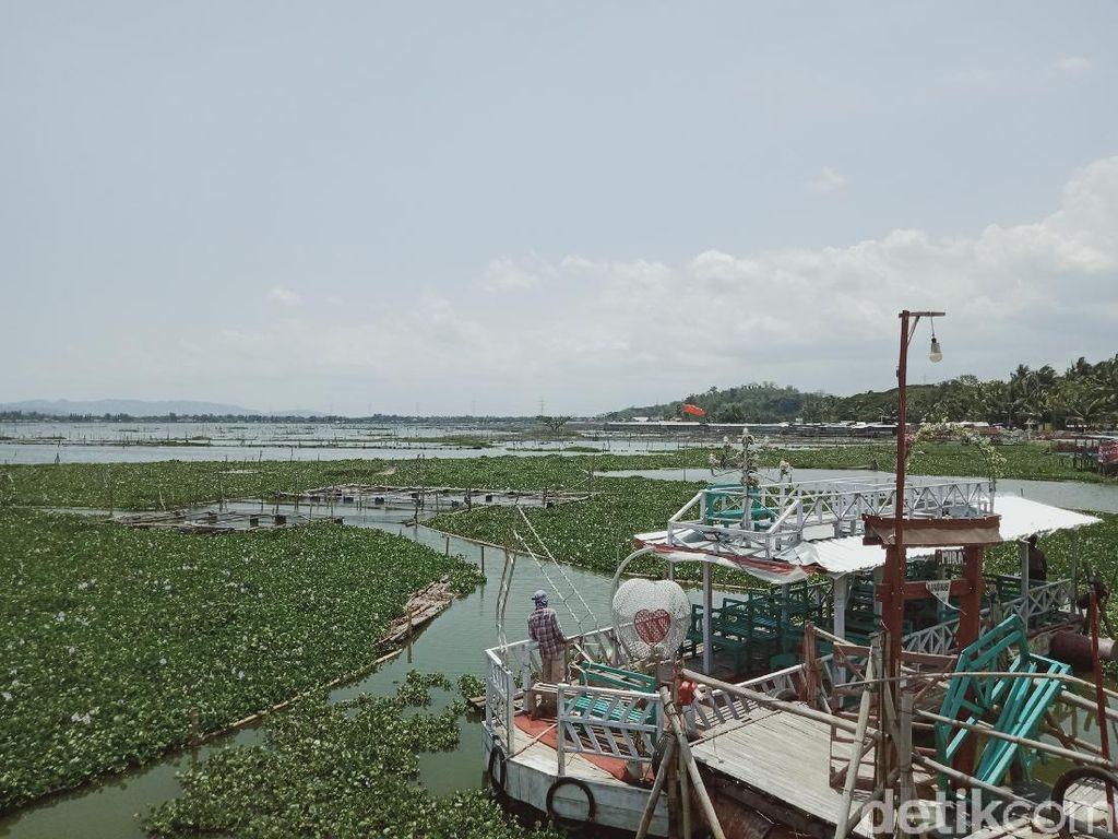 Dikepung Enceng Gondok, Kapal Wisata di Rawa Jombor Klaten Mangkrak