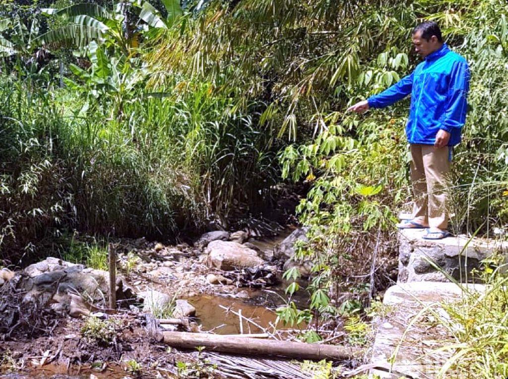 45 Hektare Lahan Pertanian di Sukabumi Terancam Gagal Panen