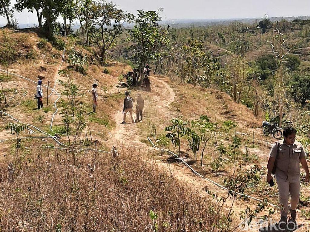 Operator Tambang Emas Banyuwangi Klaim Telah Serahkan Lakom Terluas di Jawa