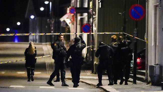 5 Orang Tewas dalam Serangan Panah di Norwegia, Pelaku Ditangkap