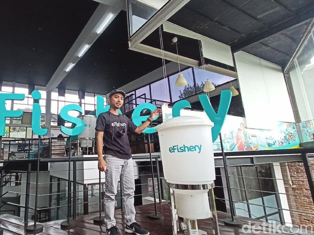 Mentap! Startup Perikanan Made In Bandung Jajal User Luar Negeri