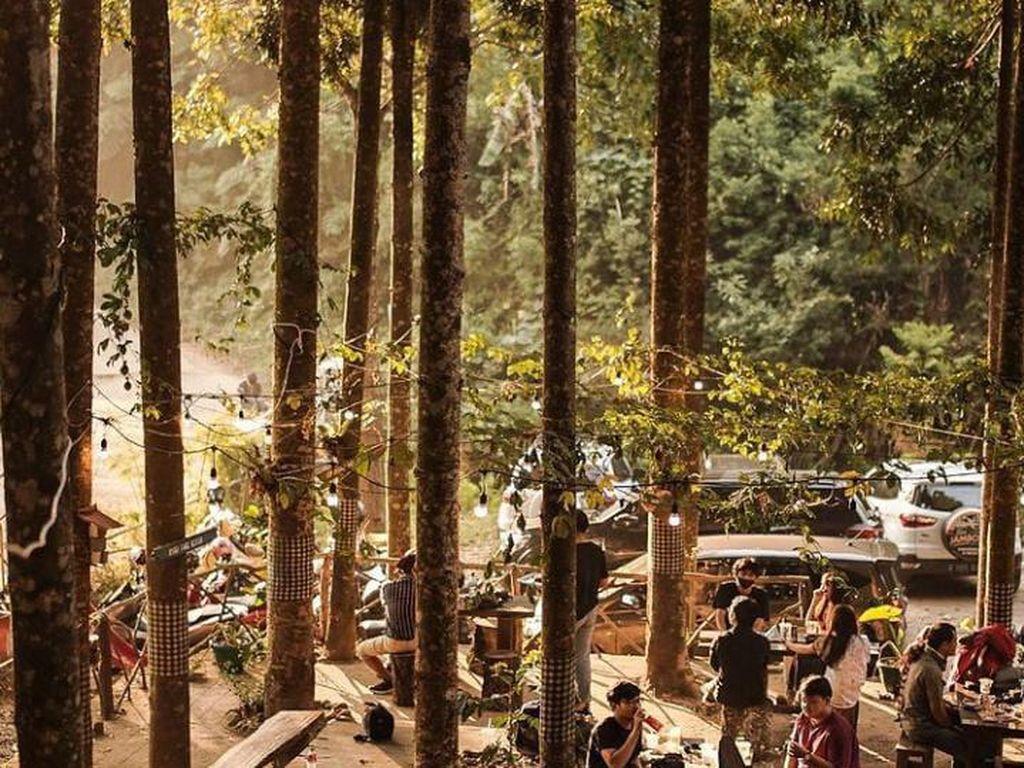 Adem! 5 Kafe di Bogor Ini Tawarkan Pemandangan Hijau dan Asri