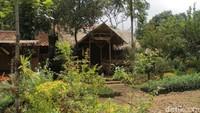 Saung Eling, Tempat Makan dengan Pemandangan Hijau di Bogor