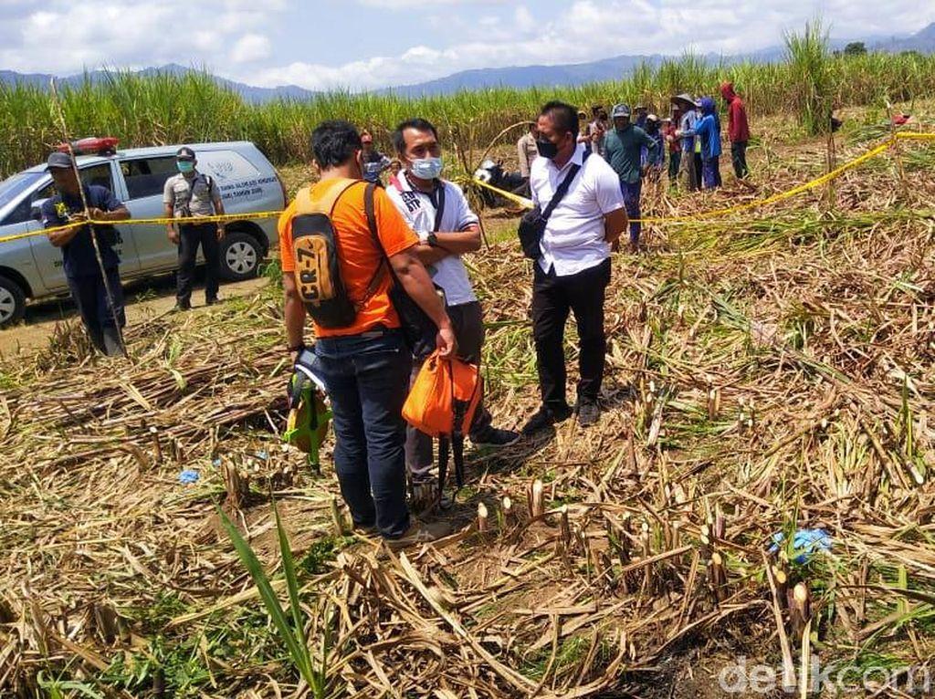Mayat yang Nyaris Tinggal Kerangka Ditemukan di Kebun Tebu Banyuwangi