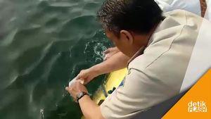 Polisi Lepaskan Baby Lobster Hasil Sitaan