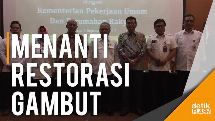 Lahan Gambut di 7 Provinsi Segera Direstorasi!
