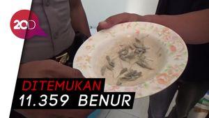 Polisi Gerebek Kos Tempat Pengepulan Baby Lobster