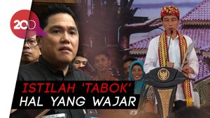 Jokowi Pakai Diksi Tabok, Erick Thohir: Semut Diinjak Aja Gigit