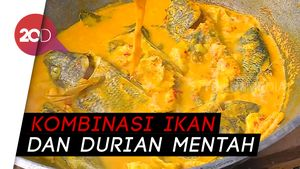 Punya Durian Mentah? Bikin Gulai Diyon Mengkal Aja