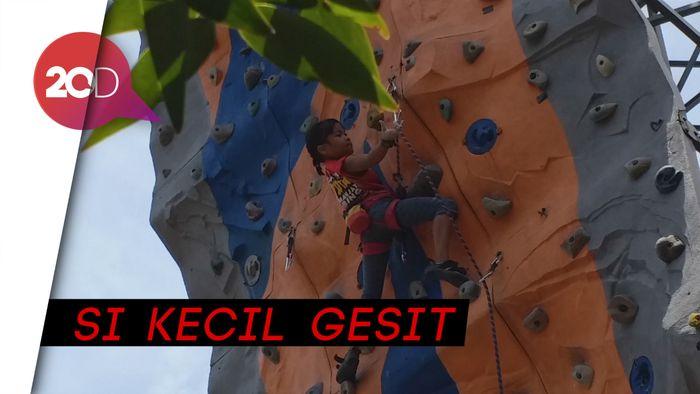 Melihat Aksi Balqis, Si Laba-laba Kecil Asal Bandung