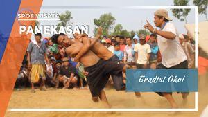Tradisi Okol, Gulat Meminta Hujan ala Pamekasan, Jawa Timur