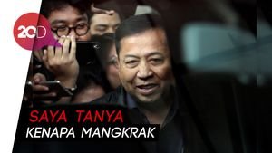 Setya Novanto Bantah Minta Proyek PLTU Riau-1 ke Sofyan Basir