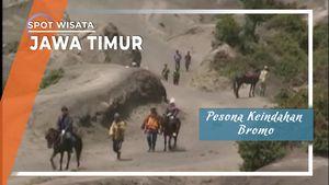 Alam Indah Bromo, Jawa Timur