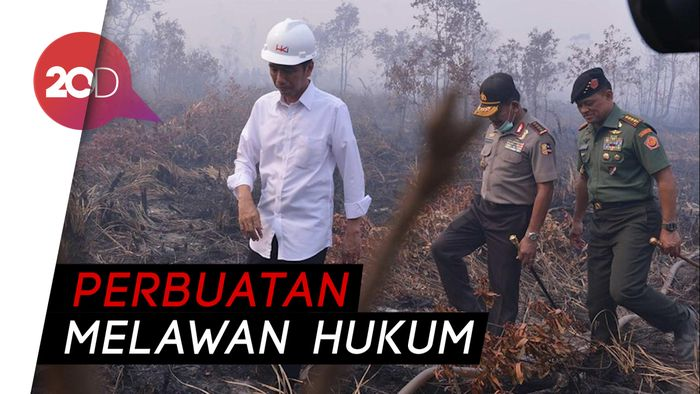Kasus Kebakaran Hutan, Jokowi Kalah di Tingkat Kasasi