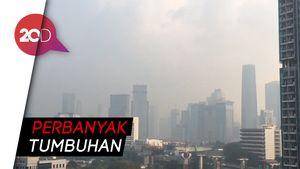 Nggak Cuma Lidah Mertua, Ini Tips BPPT Kurangi Polusi Jakarta