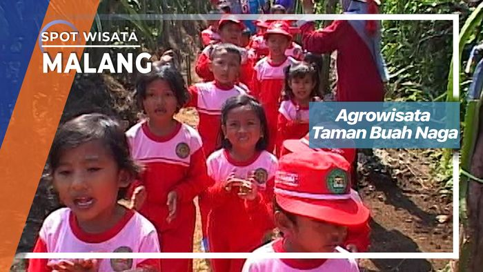 Agrowisata Taman Buah Naga, Malang