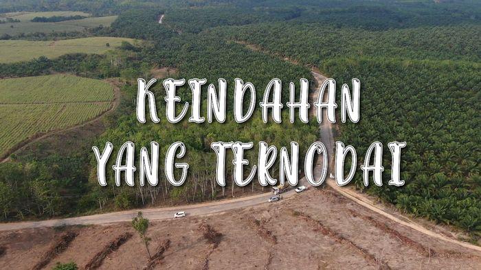 Jalur Asri nan Hijau Kampung Sri Rezeki yang Ternodai Jalanan Rusak