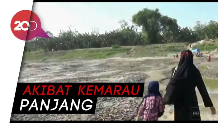 Tak Pakai Perahu, Warga Sebrangi Sungai Bengawan Solo Berjalan Kaki