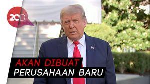 Lampu Hijau Trump Restui TikTok di Amerika