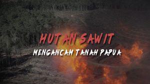 Hutan Sawit Mengancam Tanah Papua