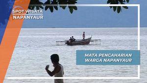 Budidaya Kerang, Salah Satu Mata Pencaharian Warga Napanyaur, Papua Barat
