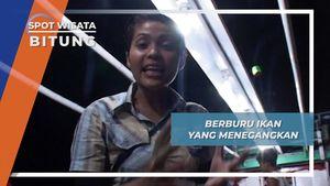 Cahaya Lampu Memanggil, Ikan Ku Tangkap di Bitung Sulawesi Utara