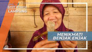 Menikmati Manisnya Benjak Enjak, Lampung