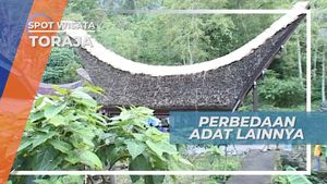Perbedaan Adat dan Budaya Setiap Desa Adat Tana Toraja Sulawesi Selatan