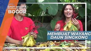 Susah-susah Mudah, Membuat Wayang Berbahan Daun Singkong, Bogor