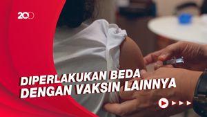 Vaksin Sinovac Tak Dipilih Singapura Jadi Program Vaksinasi Nasional