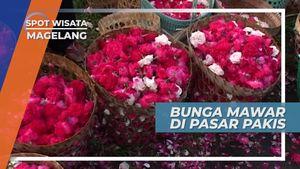 Bunga Mawar Cantik di Pasar Pakis, Magelang