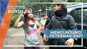 Jalan-jalan ke Boyolali, Mengunjungi Peternakan Sapi Perah, Jawa Tengah