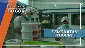 Mengunjungi Tempat Pembuatan Yogurt, Bogor