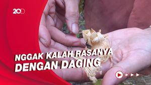 Sensasi Mencicipi Soto Kembang Durian di Kulon Progo