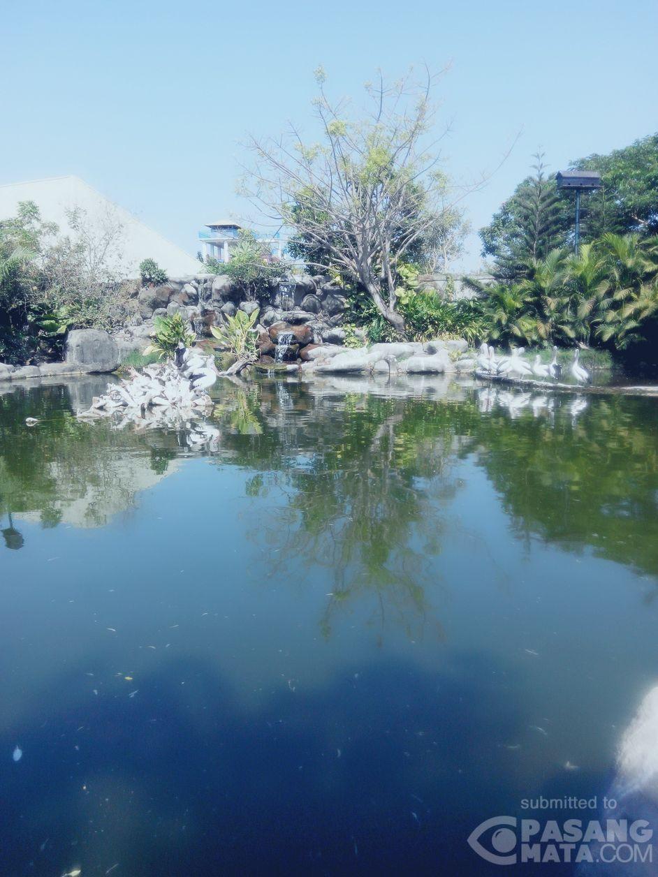 Indahnya Taman Di Gowa Discovery Park Di Makassar Wisata Pasangmata