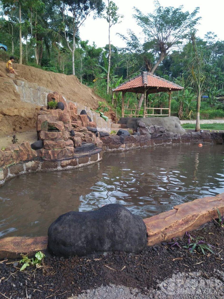 Taman Wisata Rawa Indah Objek Wisata Baru Di Bondowoso Wisata