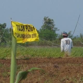 Cerita Bendera Kuning Tolak PLTU Batang, Pembangkit Terbesar ASEAN