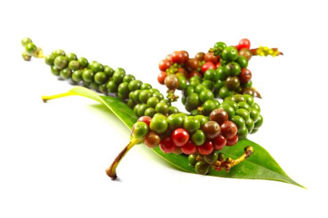 Untuk Pertama Kali <i>International Pepper Community</i> Gelar <i>Pepper Day</i> di Indonesia