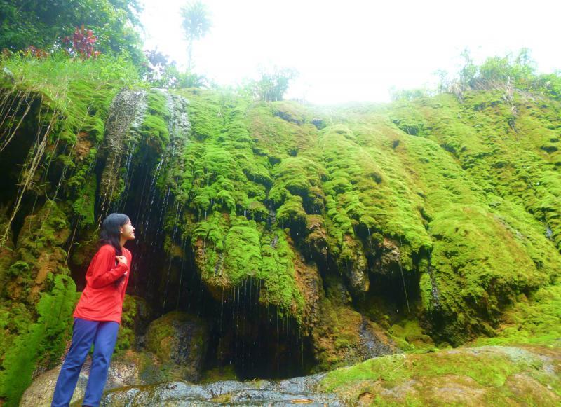Menikmati Alam Hijau Baturaden di Purwokerto