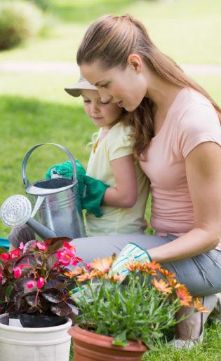 5 Penyebab Timbulnya Penyakit Berbahaya dari Pekarangan Rumah