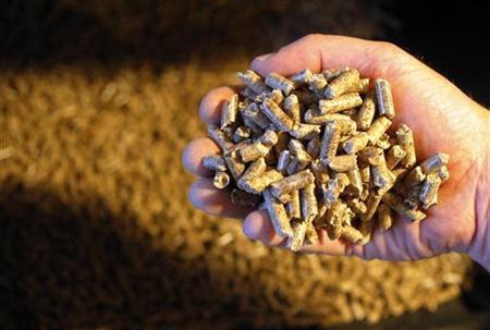 BUMN Ini Bikin Pabrik Pelet Kayu untuk Pembangkit Listrik Rp 40 M